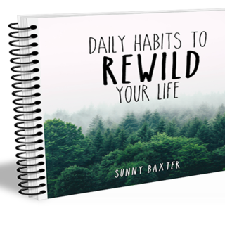 Daily Habits To Rewild Your Life (E-book) Available Now!